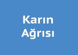 karin-agrisi