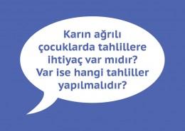 karin-agrisi-1
