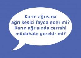 karin-agrisi-3