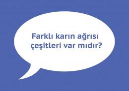 karin-agrisi-6