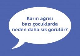 karin-agrisi-7